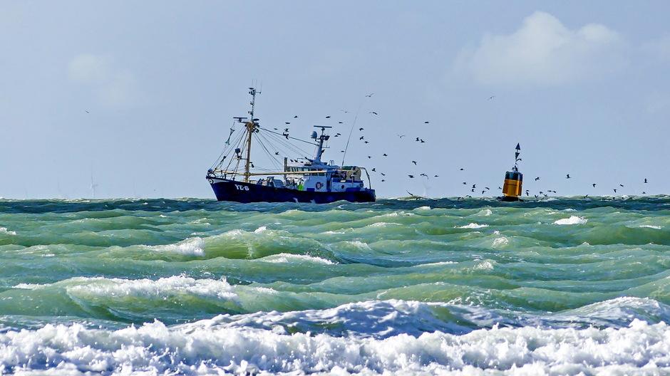 Stevige zuidwester viskotter op woelige golven