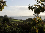 Exmouth from Courtlands Lane