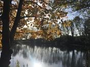 Mr Parkens reservoir Waldringfield