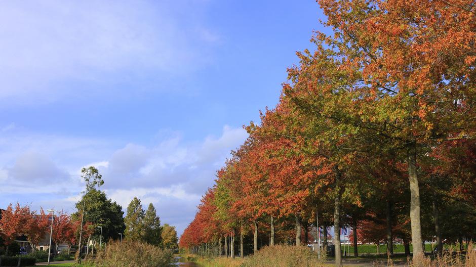 Aanvankelijk nog mooi herfstweer met flink wat zon