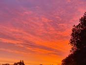 Bedfield sunrise 29.10.20