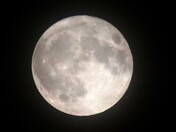 Bluemoon over Exmouth