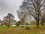 Autumn at the Lake Grounds, Portishead