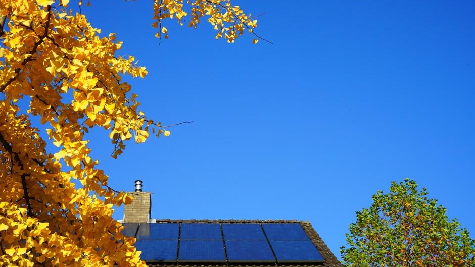 Volop zonne-energie