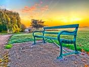 Misty morning walk over Harrowlodge Park