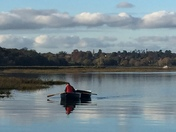 Rowing on the Deben