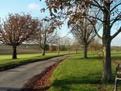 Parnell Lane, Elmswell
