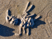 Beach Art in the Autumn Sunshine