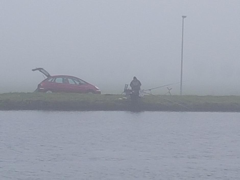 Grijs met visser