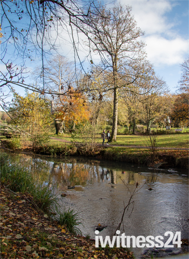 Autumn colour in The Byes