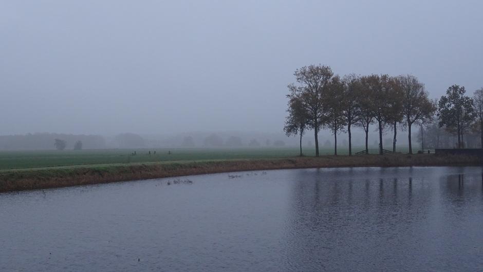 Een grijze en nevelige start van deze zaterdag in Heerenveen Friesland
