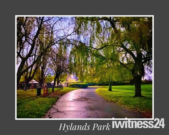 Hylands Park morning path
