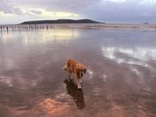 Mirrored Sands