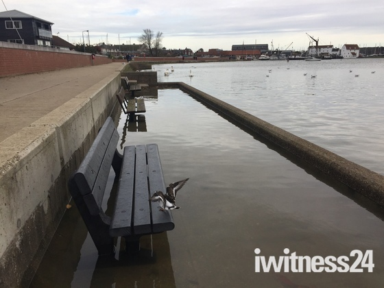 Flooded quay Woodbridge