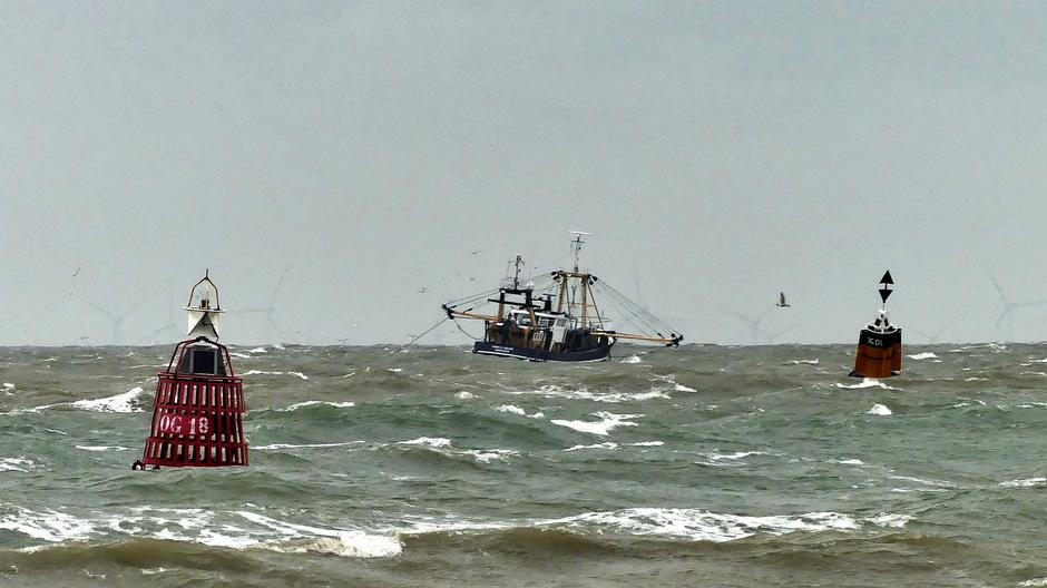 Vissersboot tussen de boeien