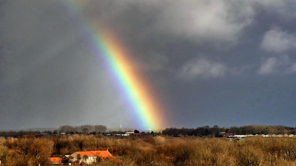 Fel regenboogje