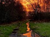 Molten lava autumn sunrise on Gittisham common