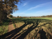 Yawning shadows on the fields of old martlesham
