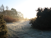 a beautiful frosty morning in November