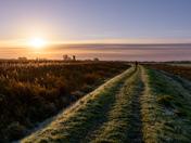 Upton marsh walk