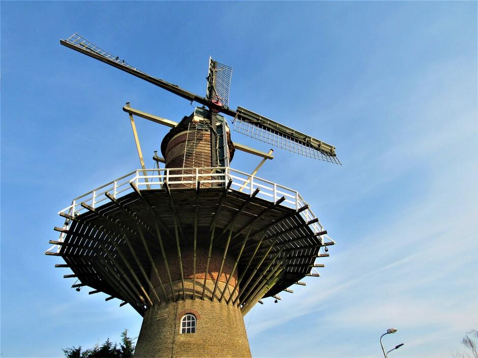 De molen van Wolphaartsdijk