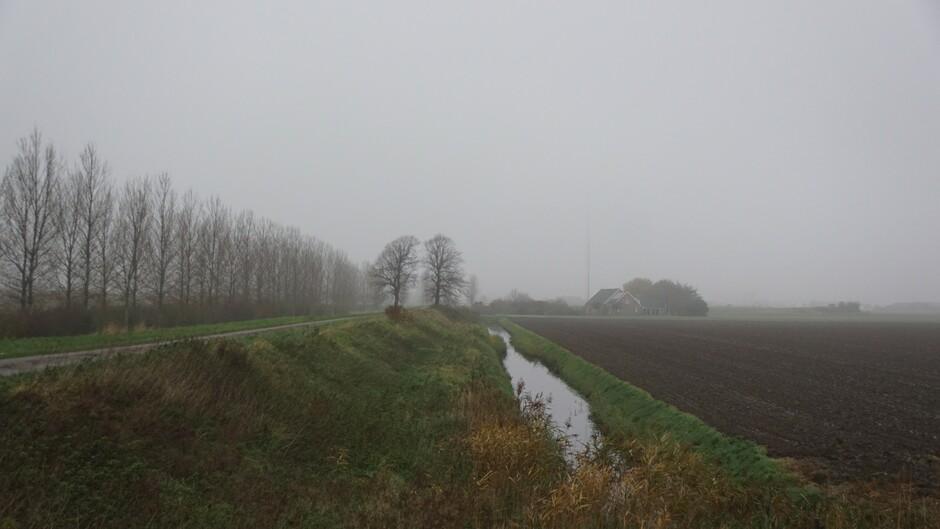 grijs mistig miezerig weer in de polder 9 gr