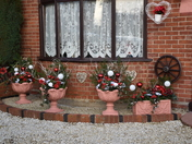 Christmas Decorations in Lancing Avenue, Ipswich