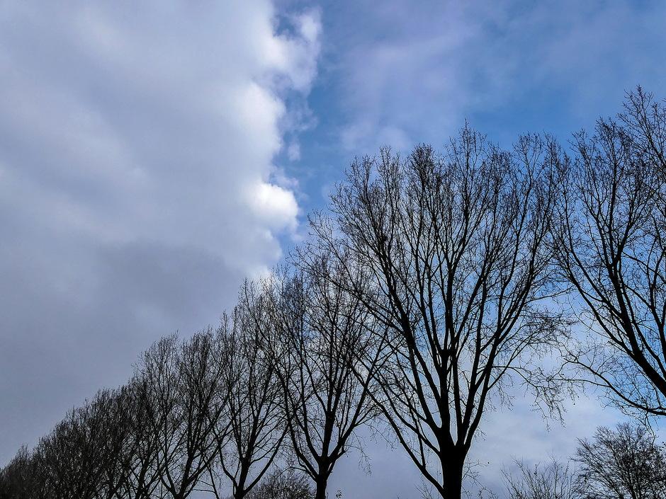 Grijs wolkendek breekt open