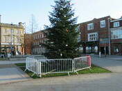 Exmouth Strand Christmas tree