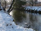 PROJ 52, SEASON CHANGE. WINTER. RIVER WENSUM IN THE SNOW