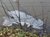 ICE ON THE POND  AT HEMPTON