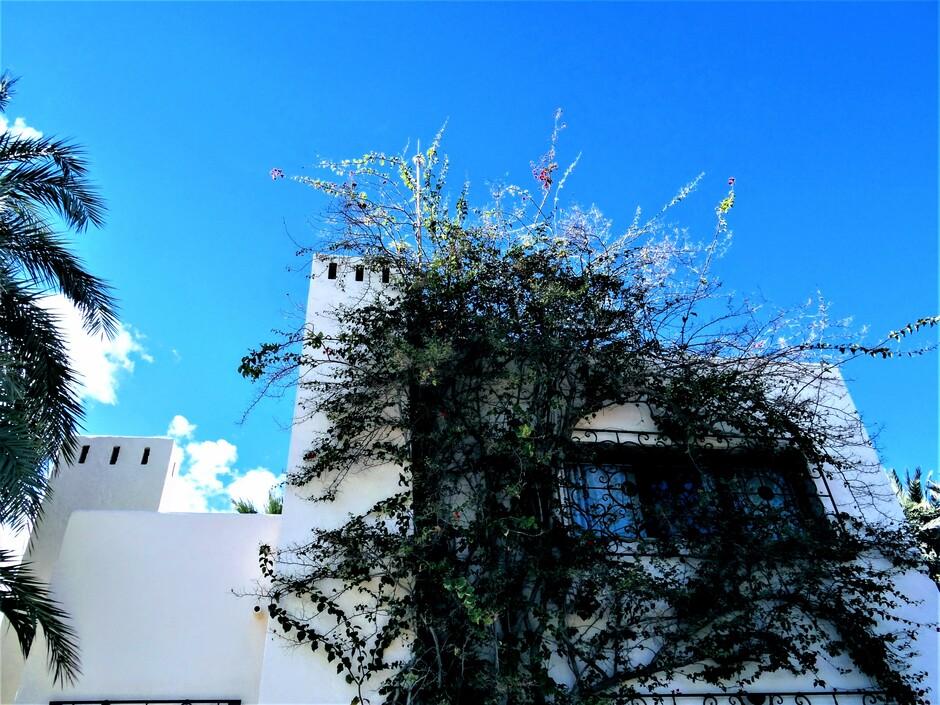 Hoe mooi kan het in de winter zijn in Moraira