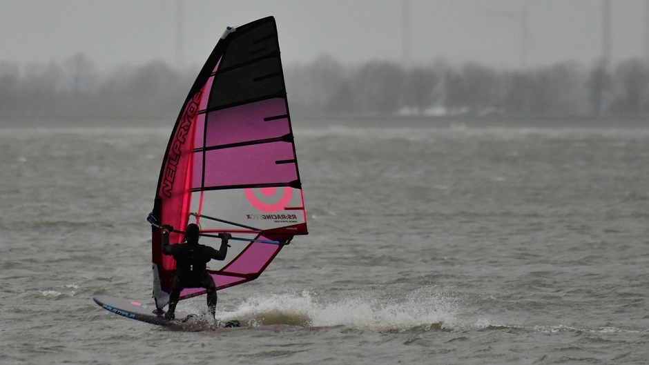 Windsurfen bij strand Horst
