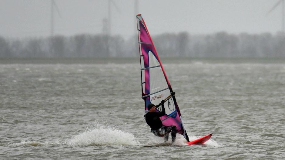 Windsurfer op het Veluwemeer