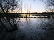 Flooded fields Nayland