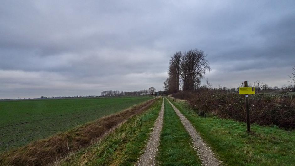 Bloemendijk