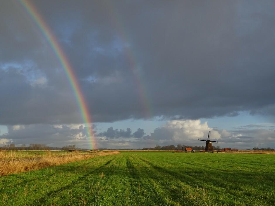 Een dag vol regenbogen