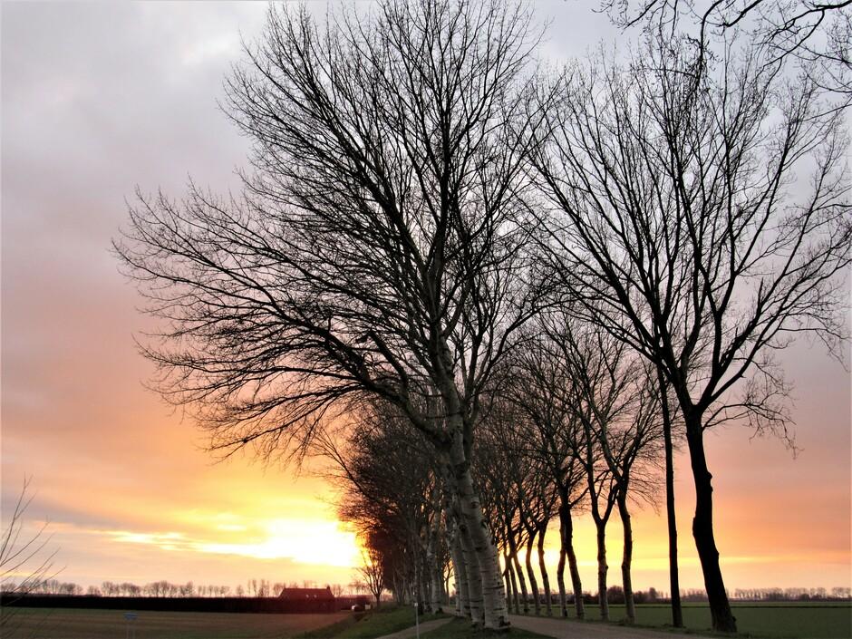 Tijdens zonsondergang