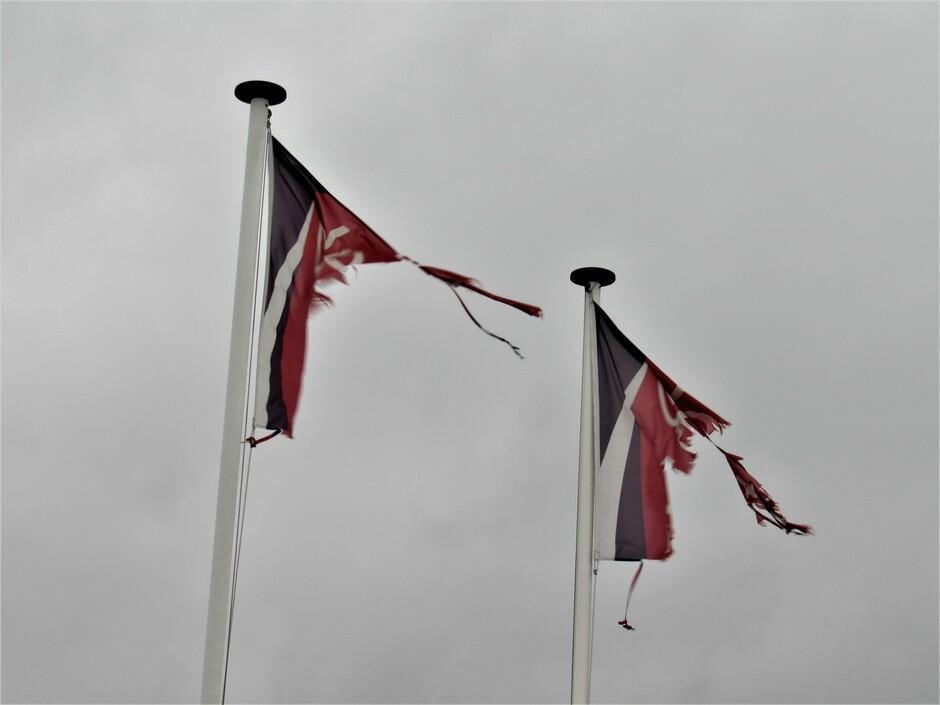 Tegen de harde wind is niets bestand......