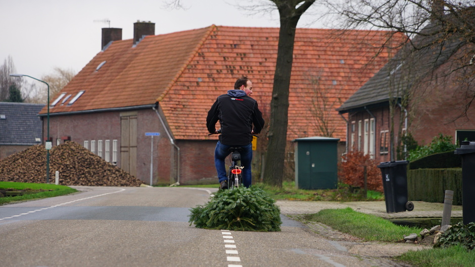 Kerstboom vervoer