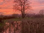 Evening sunset at Brandiston