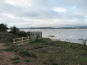 Exe Estuary bird-hide