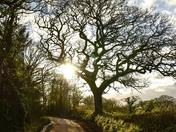 Country Lanes and parhs