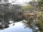 Bystock Pools
