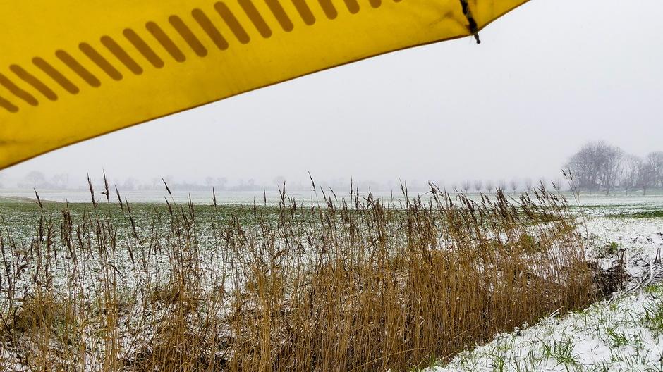 Paraplu voor de sneeuw