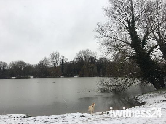 Snow in Norwich