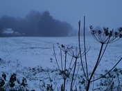 Snowy misty day