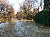 River Gipping at High Food level
