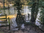 The River Gipping at Flood levels