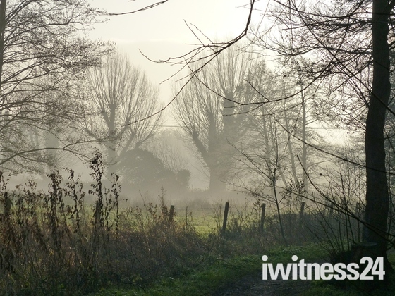 PROJ 52, WINTER MORNINGS,  MISTY WINTER MORNING AT FAKENHAM